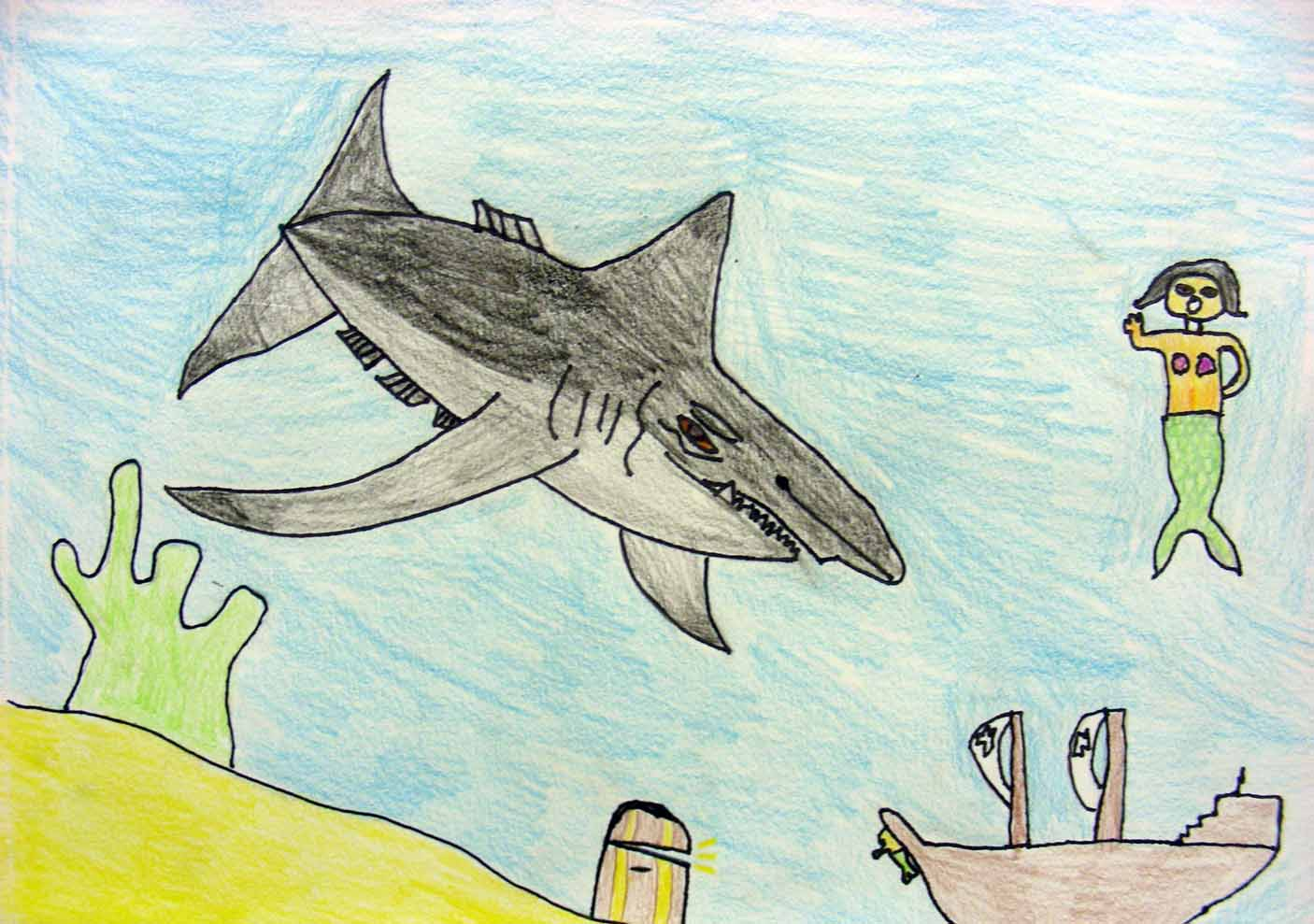 99 How To Draw Shark For Kids How To Draw A Shark Step By Step For