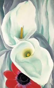 okeefe flower 1